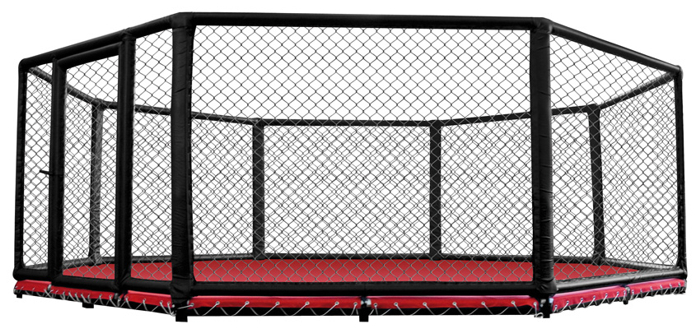 The gallery for octagon cage background for Fitness depot wedding