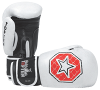 Sparring Gloves 12 & 14 oz